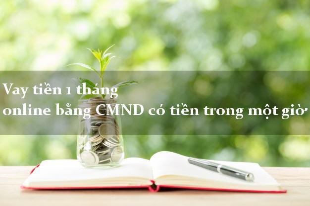 Vay tiền 1 tháng online bằng CMND có tiền trong một giờ